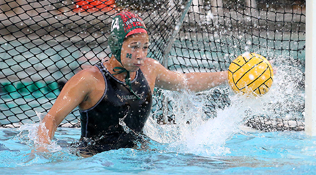 Water Polo Above Water Punches - YouTube