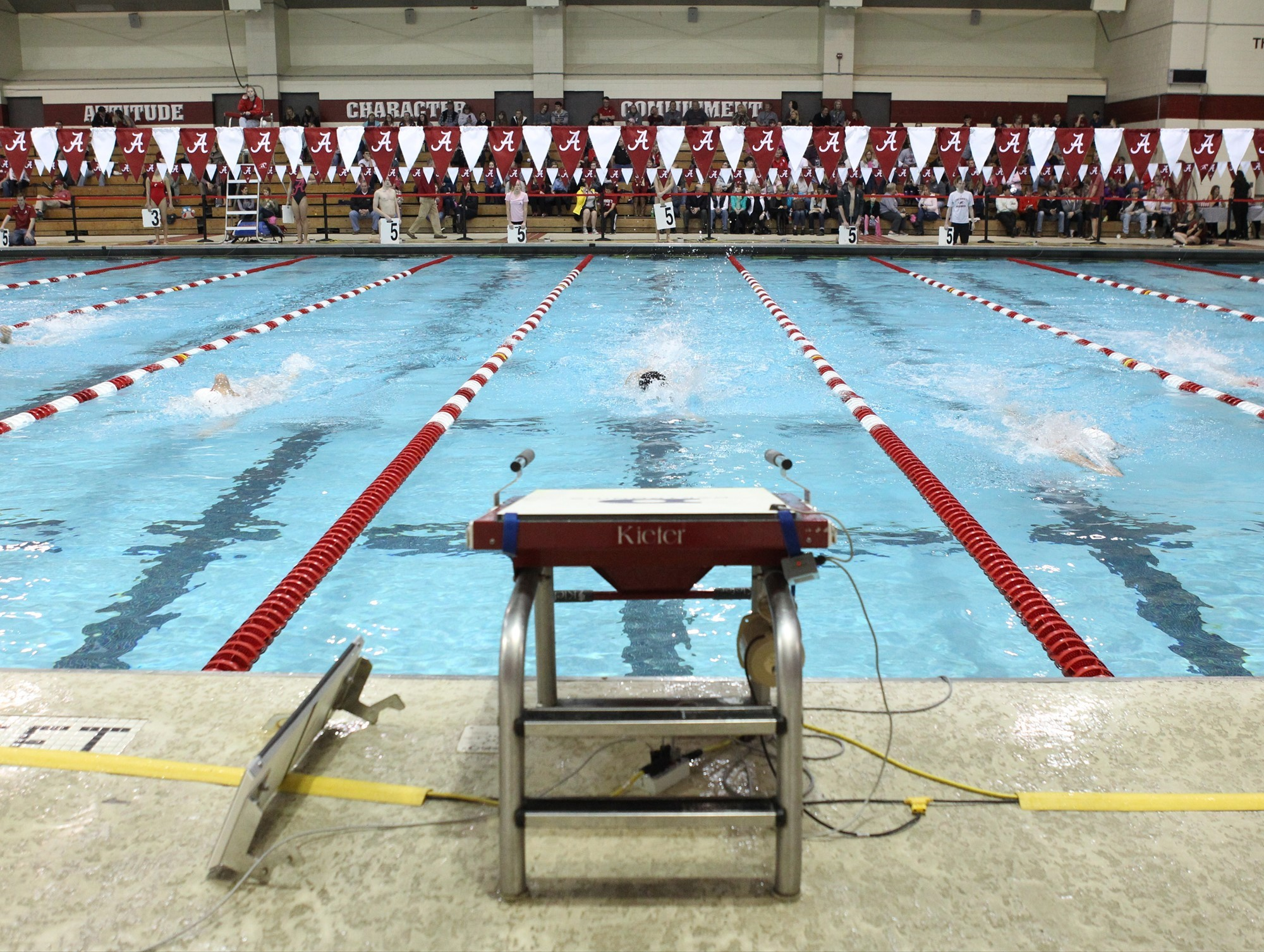 Alabama Aquatic Center And Don Gambril Olympic Pool University Of