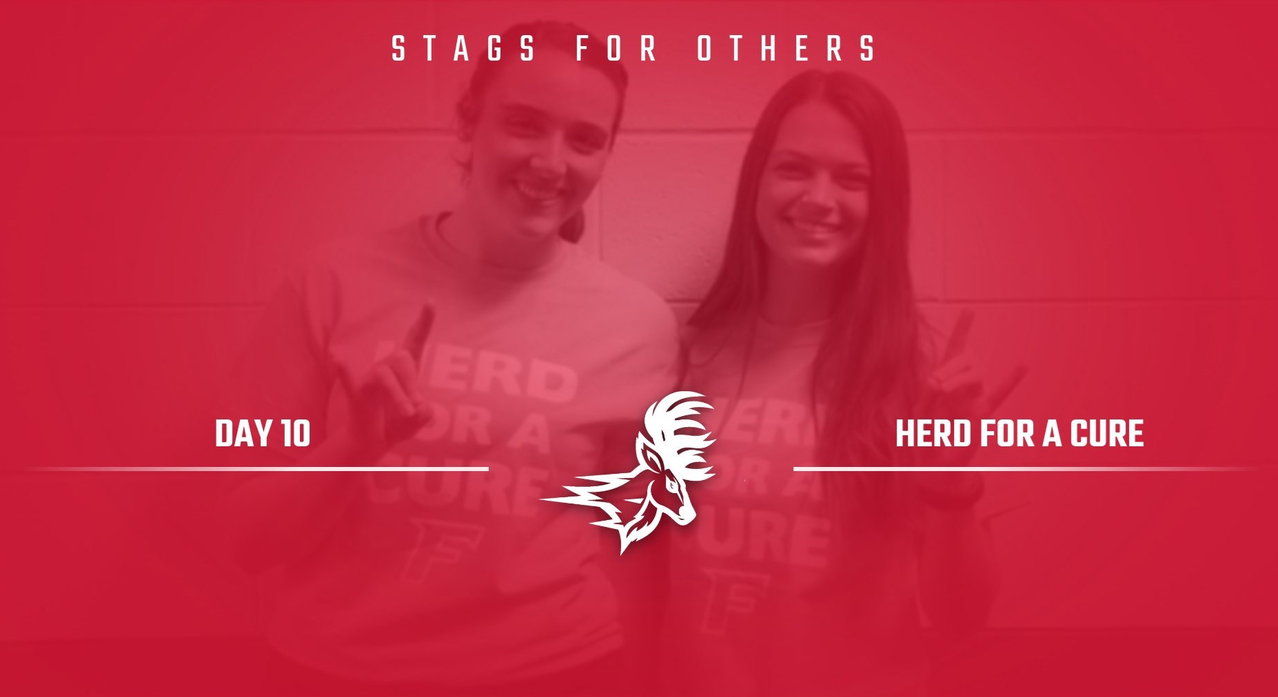 Stags for Others: Herd for a Cure