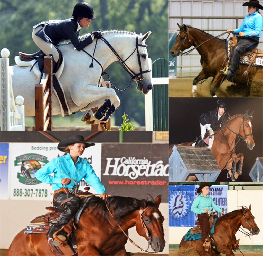 New Mexico State Athletics Nm State Equestrian Signs