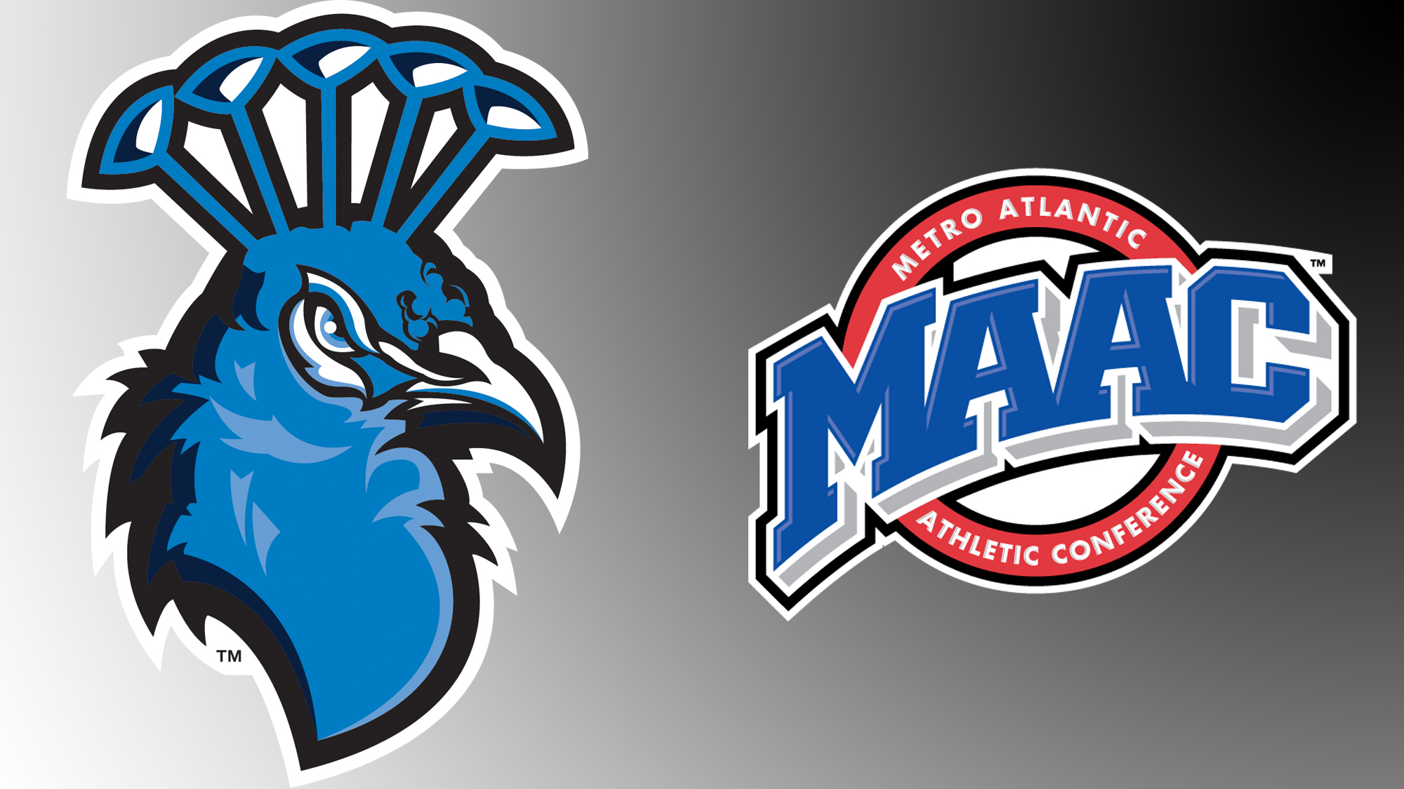 seven men s soccer student athletes named to the maac all academic