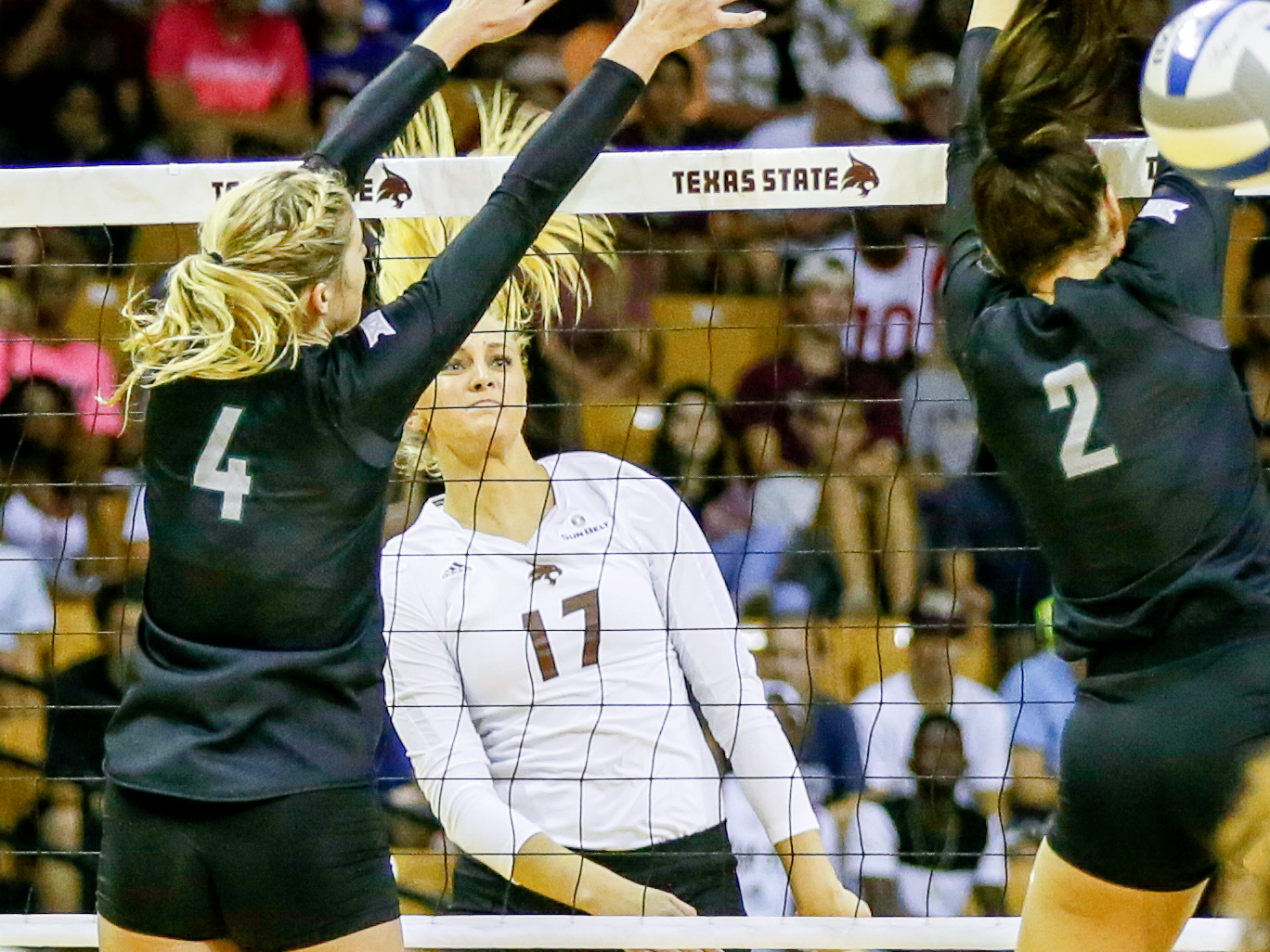 Volleyball Sets Attendance Record Tuesday Night Against