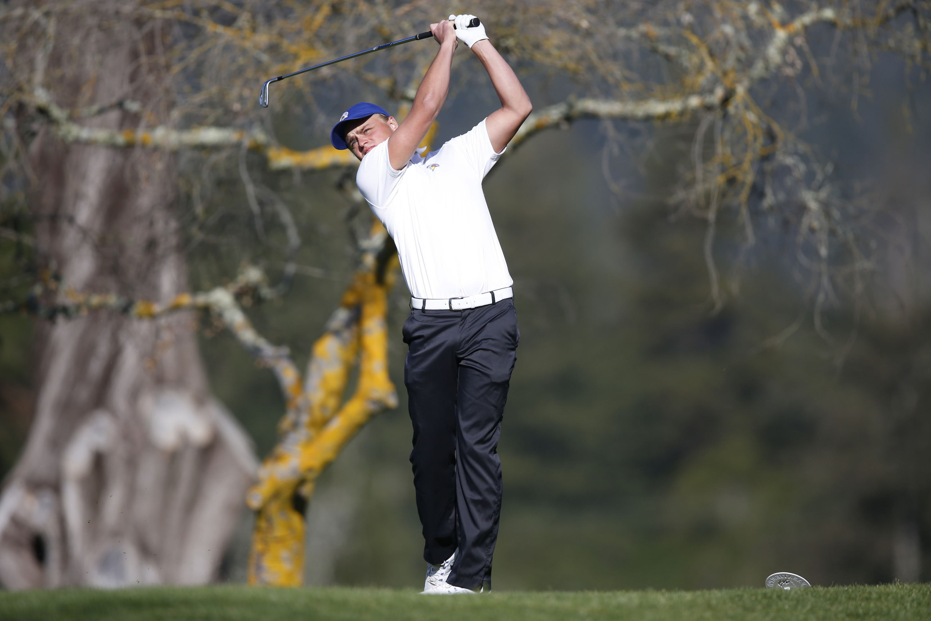 Henrik Sohlberg will be making his season debut on Friday at the Price's Give 'Em Five Invitational.